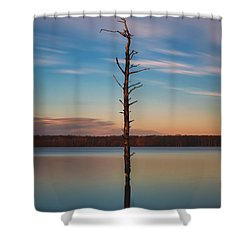 Stand Alone 16x9 Crop Shower Curtain