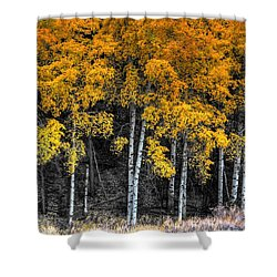 Stand  Shower Curtain