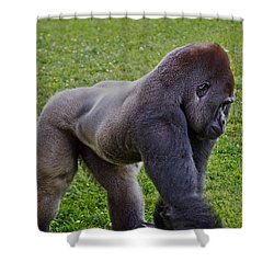 Stand Off Shower Curtain