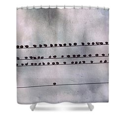 Stand Out From The Crowd Shower Curtain by Jai Johnson