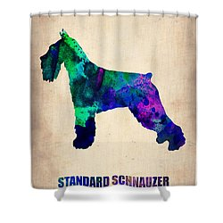 Standard Schnauzer Poster Shower Curtain by Naxart Studio