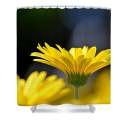Standing Above The Rest Shower Curtain by Maria Urso