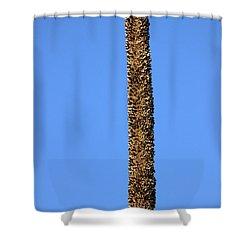 Shower Curtain featuring the photograph Standing Alone by Miroslava Jurcik