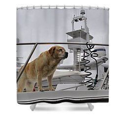 Standing Guard Shower Curtain by Cathy Mahnke