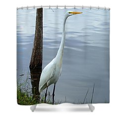 Standing Tall Shower Curtain by Bob Sample