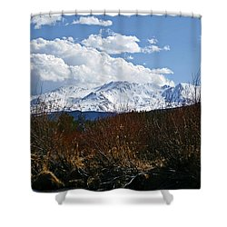 Standing Tall Shower Curtain by Jeremy Rhoades