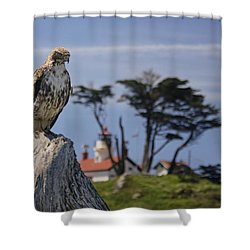 Shower Curtain featuring the photograph Standing Watch by Betty Depee