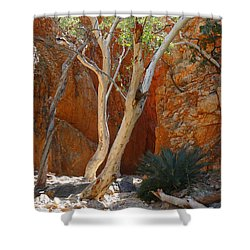 Standley Chasm Shower Curtain