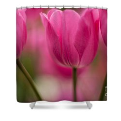 Standouts Shower Curtain by Mike Reid