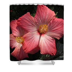 Star Flower Shower Curtain by Barbara Griffin