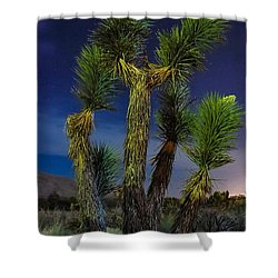Shower Curtain featuring the photograph Star Gazing by Angela J Wright