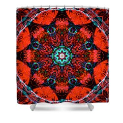 Star Inside Red 2 Shower Curtain