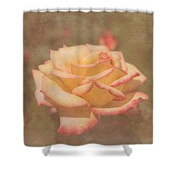 Star Rose Shower Curtain