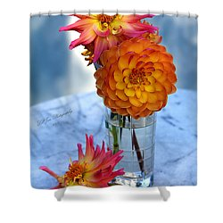 Shower Curtain featuring the photograph Starfire by Jeanette C Landstrom