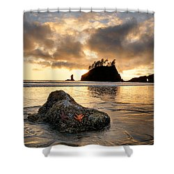 Starfish Shower Curtain by Leland D Howard