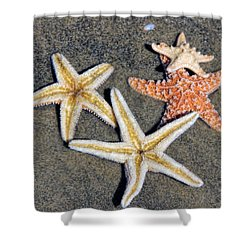 Starfish Shower Curtain by Tammy Espino