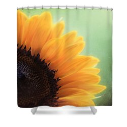 Staring Into The Sun Shower Curtain by Amy Tyler