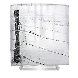 Stark Realities Of Winter Shower Curtain by John Haldane