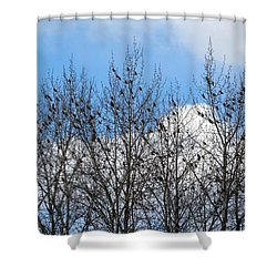 Starlings In The Cottonwoods Shower Curtain by Will Borden