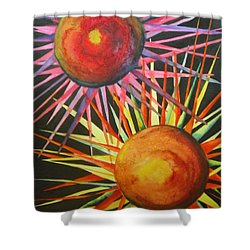 Shower Curtain featuring the painting Stars With Colors by Chrisann Ellis