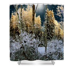 Starshine On A Snowy Wood Shower Curtain