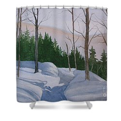 Stay On The Path Shower Curtain