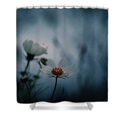 Shower Curtain featuring the photograph Stay With Me A While by Rachel Mirror