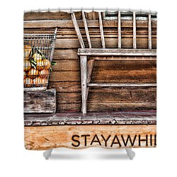 Stayawhile Shower Curtain by Diana Sainz