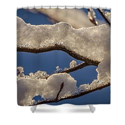 Shower Curtain featuring the photograph Staying Warm by Steven Santamour