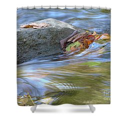 Shower Curtain featuring the photograph Steadfast by Jane Ford