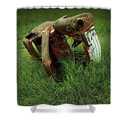 Steel Auto Carcass With Vultures Shower Curtain