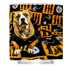 Pitbull Rescue Dog Football Fanatic Shower Curtain by Shelley Neff