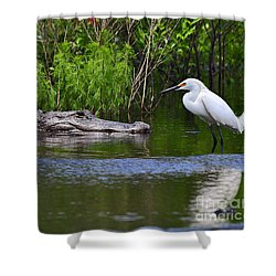 Steely Snowy Shower Curtain by Al Powell Photography USA