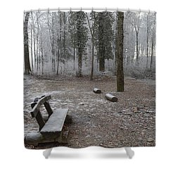 Shower Curtain featuring the photograph Steep And Frost - 3 by Felicia Tica