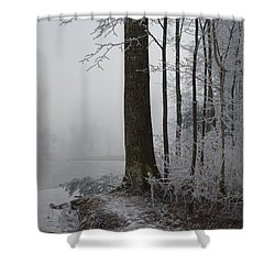 Steep And Frost Shower Curtain by Felicia Tica