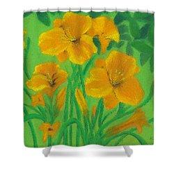 Stella De Oro Shower Curtain