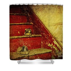 Shower Curtain featuring the photograph Step Back In Time by Debra Fedchin
