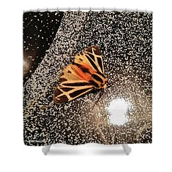 Step Into The Light Shower Curtain