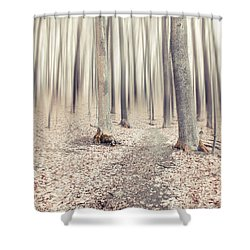 Steppin' Through The Last Days Of Autumn Shower Curtain by Hannes Cmarits