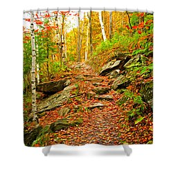 Shower Curtain featuring the photograph Stepping Stones by Bill Howard
