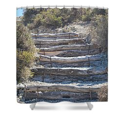 Steps In The Woods Shower Curtain