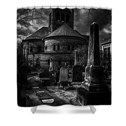 Steps Into The Past Shower Curtain by Lynn Palmer