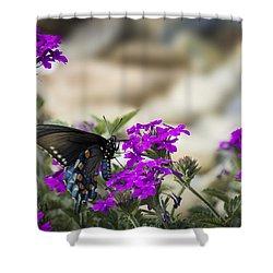 Still Beautiful Swallowtail Shower Curtain