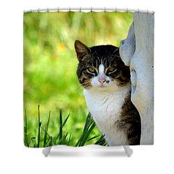 Still Shower Curtain by Deena Stoddard