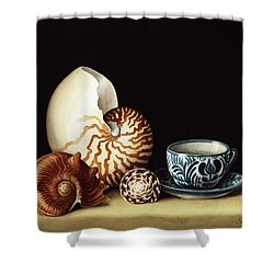 Still Life With Nautilus Shower Curtain by Jenny Barron
