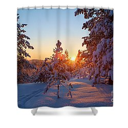 Still Standing In The Winter Sunset Shower Curtain