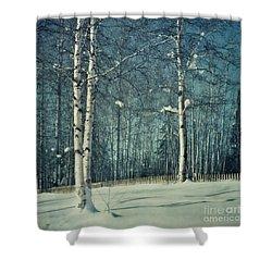Still Winter Shower Curtain by Priska Wettstein
