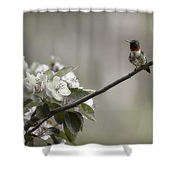 Stilllife Shower Curtain
