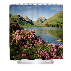 Stillness Of The Mountain Shower Curtain by Edmund Nagele