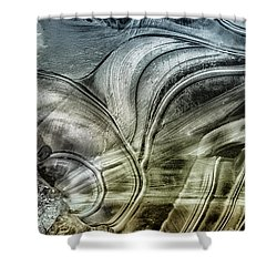 Sting Ray Shower Curtain by Susan Capuano